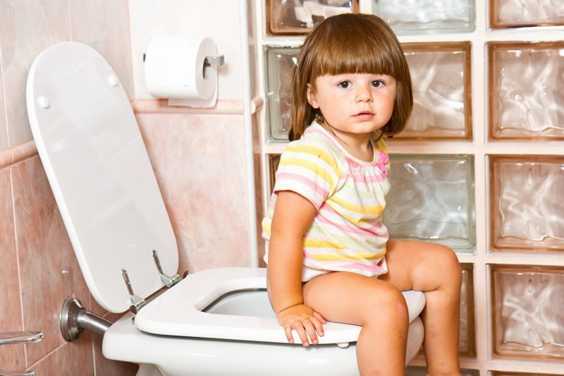 Best Potty Training Seat