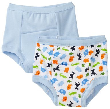 Green Sprouts Unisex Baby Training 2 Pack Underwear